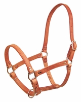 Schutz Leather Pasture Halter