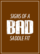 Signs of a Bad Saddle Fit