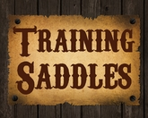 Training Saddles