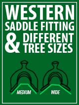 Western Saddle Fitting and Different Tree Sizes