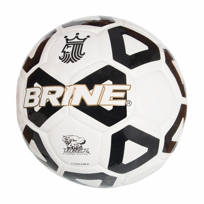 Brine Championship Soccer Ball - Click to enlarge