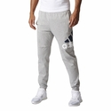 Men's adidas Essentialss Performance Logo Pants - Grey