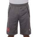 Puma Arsenal Training Shorts - Gray
