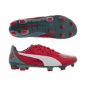 Puma evoPOWER 1.2 Graphic FG Soccer Cleats