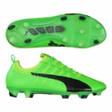 Puma evoPOWER Vigor 1 FG Soccer Cleats - Green Gecko