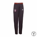 Youth adidas FC Bayern Munich Training Pants - Grey