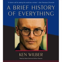 A Brief History of Everything Audiobook
