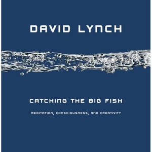 Catching the Big Fish: Meditation, Consciousness, and Creativity Book