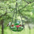 Green Bloom Perch Hummingbird Feeder