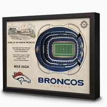 NFL Stadium 3D Wall Art