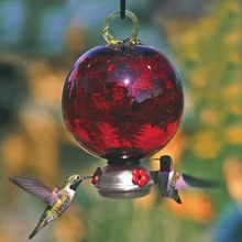 Ruby Red Dewdrop Glass Hummingbird Feeder