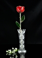 Sterling Silver Trimmed Red Rose with Crystal Vase