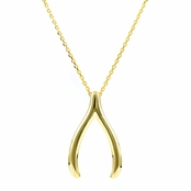 Jennifer's Wishbone Necklace - Goldtone