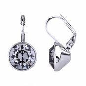Thera's 9mm Round Cut Swarovski Crystal Leverback Earrings - Grey