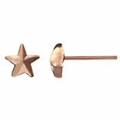 Zaida's Petite Rose Goldtone Star Stud Earrings