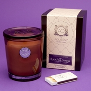 Black Fig Cypress Large Candle by Aquiesse Portfolio