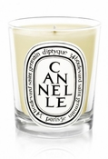 Cannelle Diptyque Candle