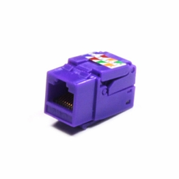 Cat6 Gigabit Toolfree Keystone Jack Modular Network RJ-45 Purple