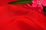 Best Fabric Lining Red 6 yards