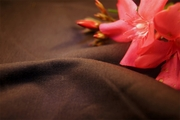 Brown Stretch Cotton Sateen Fabric 10 yards