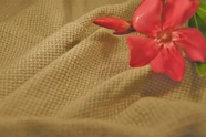 Natural Basket Weave Soft Linen Blend Fabric 11 yards