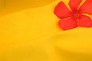 Yellow Cotton Fabric with Tricot Backing 13 yards