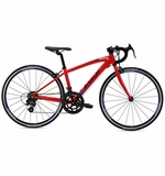 Fuji Ace 650 | 2016 Youth Road Bike