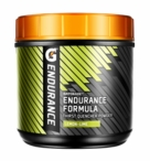 Gatorade Endurance Formula | 38 Servings