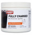Hammer Nutrition Fully Charged | 30 Servings