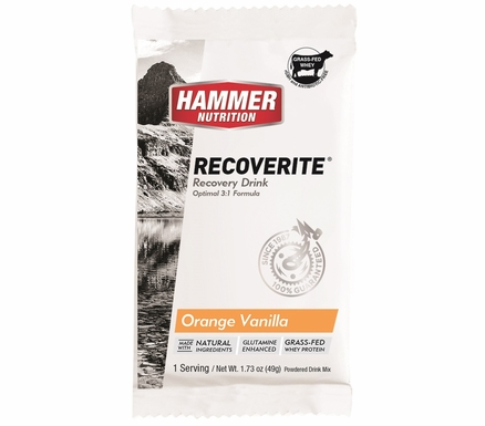 Hammer Nutrition Recoverite | Single Serving