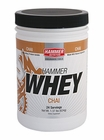 Hammer Nutrition Whey | 24 Servings