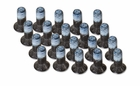 SPEEDPLAY 4x11 Screws | 24 Pack