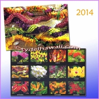Flower of Hawaii 2014 Calendar