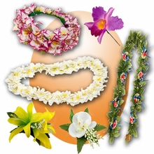 Hawaiian Leis & Flower Hair Accessories