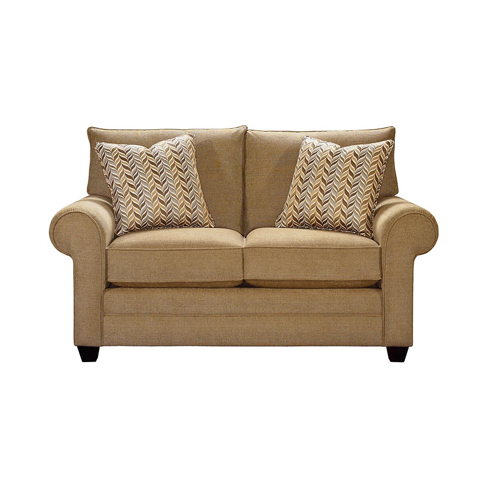 Loveseat Sleeper Sofas Sofa For