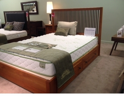 Dominion Caanan Storage Bed by Copeland Furniture