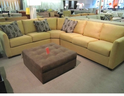 Horizon Sectional with Sleeper by Norwalk