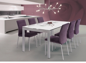 Modern Steel and Glass Dining Table