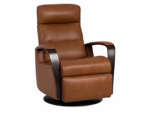 Peak Reclining Chair by IMG