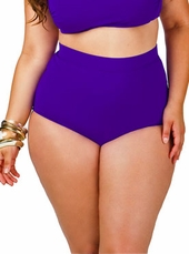 Women's Plus Size Swimwear - Monif C Plus Size Separates Sao Paulo Hi Waist Bikini Bottoms ONLY - 702b - Purple ON SALE $35