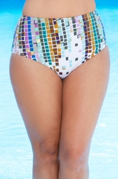 Women's Plus Size Swimwear - Simply Sole' Separates Linked in Swim Brief