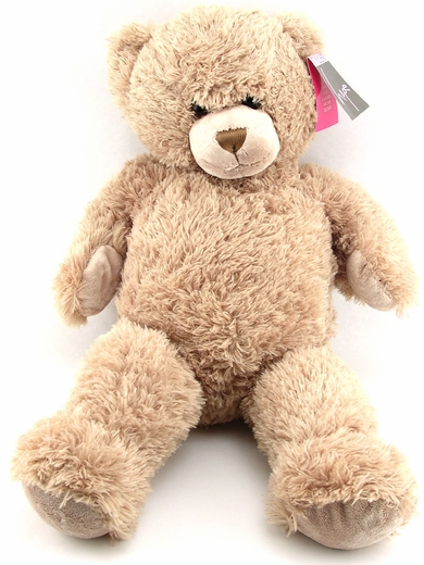Hide-A-Vibe Teddy Bear