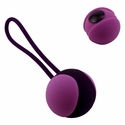 Mini Kegel Ball - Get Stronger with Two Weights