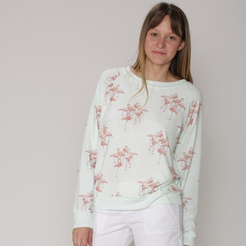 All Things Fabulous Raglan Cozy Sweatshirt in Mist/ Flamingos