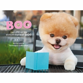 Boo The Life of The Worlds Cutest Dog