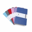Moleskine Volant Large Plain Notebook (Set of 2) (5 x 8.25)