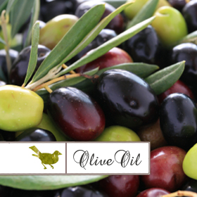 Olive Oil Collection