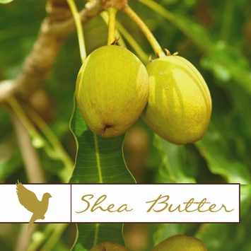 Sheabutter Collection