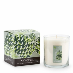 Soap and Paper Factory Roland Pine Candle (9.5 oz) in Pine