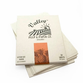 Valley Eco Pulp Stationery (8.5 x 11) in Pineapple